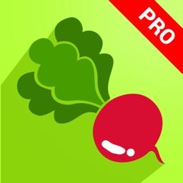 2000+ Vegetable Recipes Pro