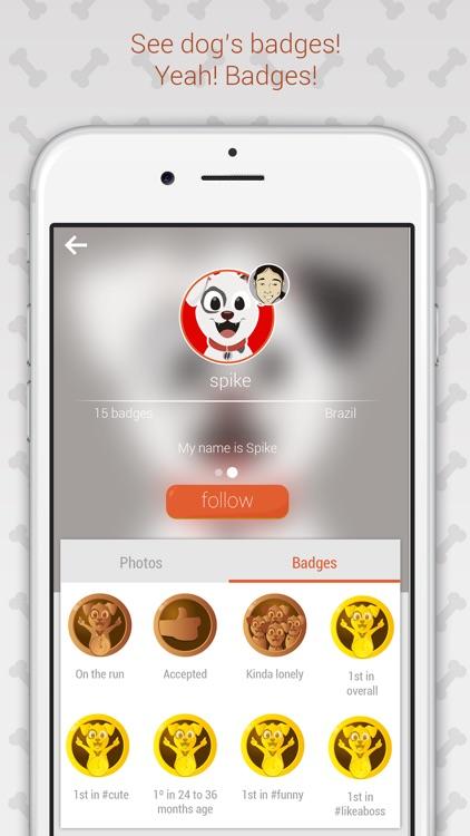 Hashdog - Dog's Social Network screenshot-3