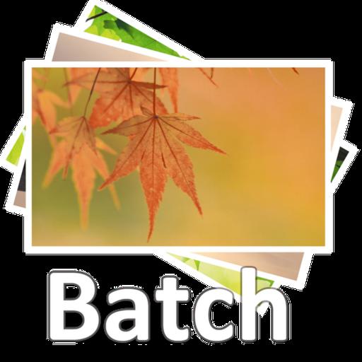 Acc Image Batch Process