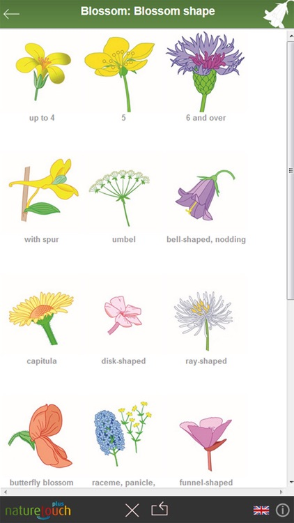 Identify 3000 plants, naturetouch screenshot-1