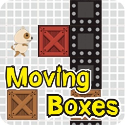 Moving Boxes - Move the wood brain game