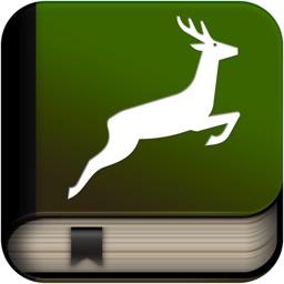 Explain 3D: Forest animals