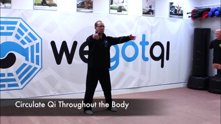 Qigong Training screenshot-3