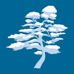 Japan Snow Guide