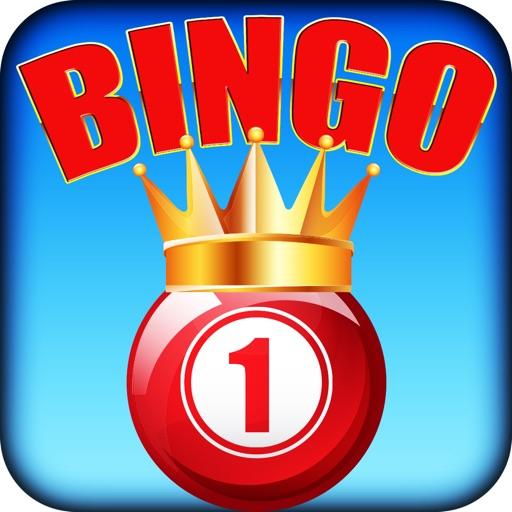 Bingo's Season Pro
