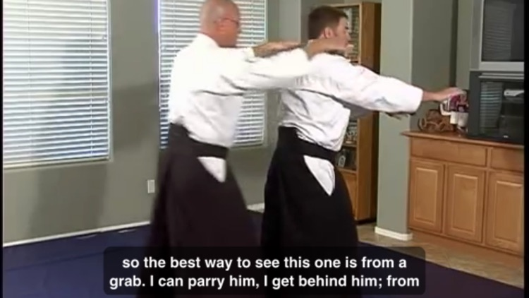 Learn Aikido Techniques screenshot-3