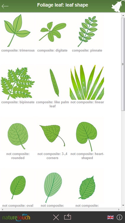 Identify 3000 plants, naturetouch screenshot-2