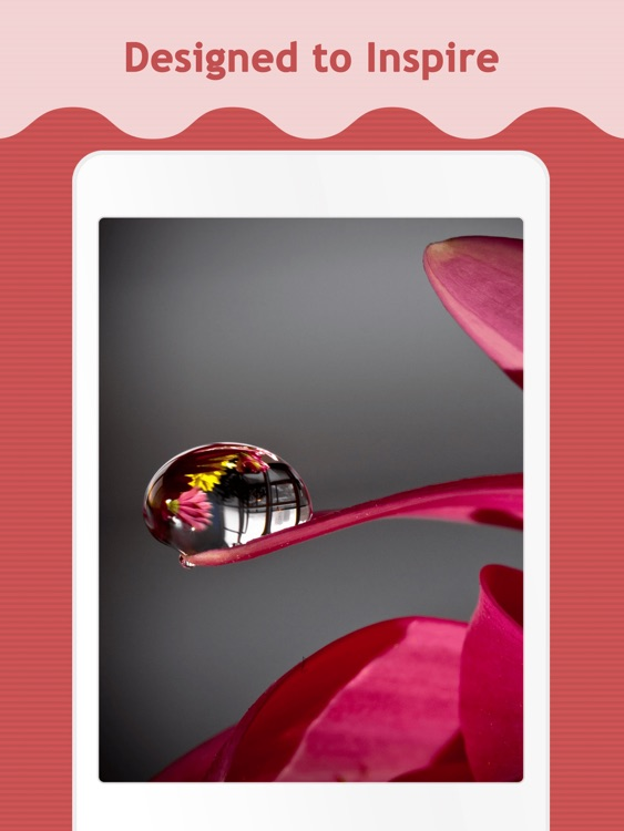 Free Wallpapers for iPad