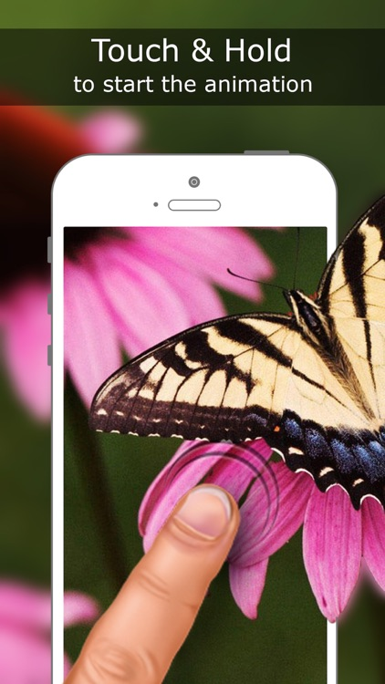 Live Wallpapers for iPhone 6s & 6s Plus  - Free Animated Backgrounds