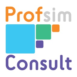 Profsim Consult - Financial Business Model of a Consultancy Partnership