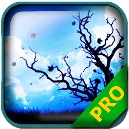 PRO - Hinterland Game Version Guide
