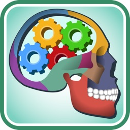 Ultimate Anatomy Quiz & Trivia - Human Body & Physiology Questions and Answers