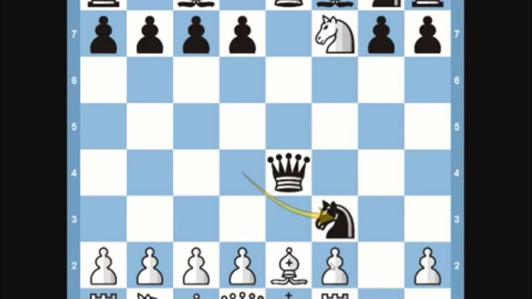 Teach Yourself To Play Chess screenshot-4