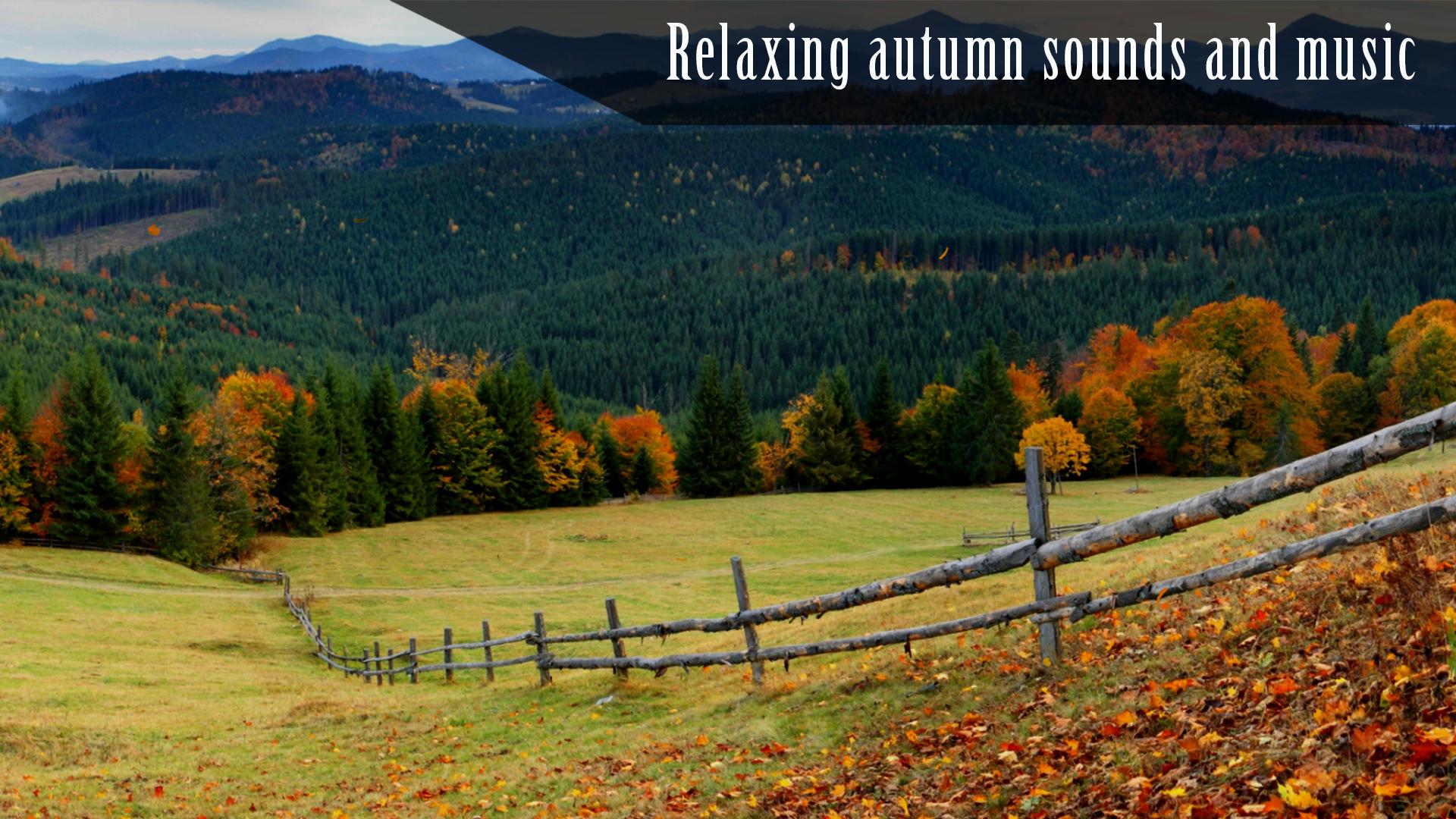 Autumn Ambience HD screenshot 12