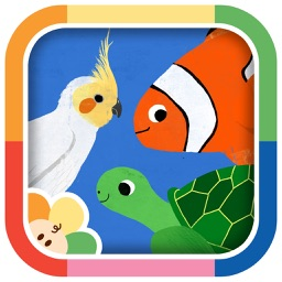 Animal Match-Up: Fun Matching Game with Animals for Kids