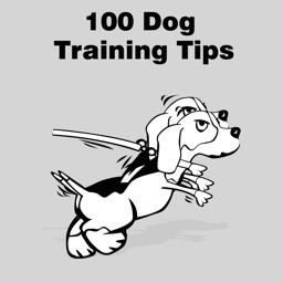 All 100 Dog Training Tips