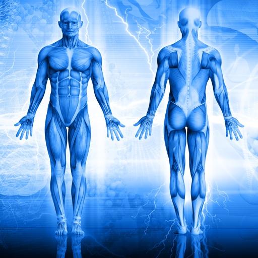 Human Body Anatomy Quiz icon