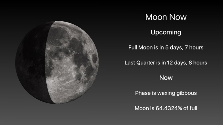 Moon Phase + Professional