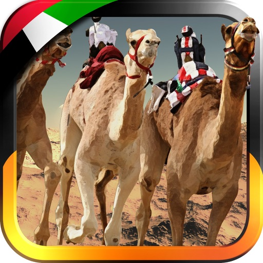 3D سباق الهجن - UAE Camel Racing
