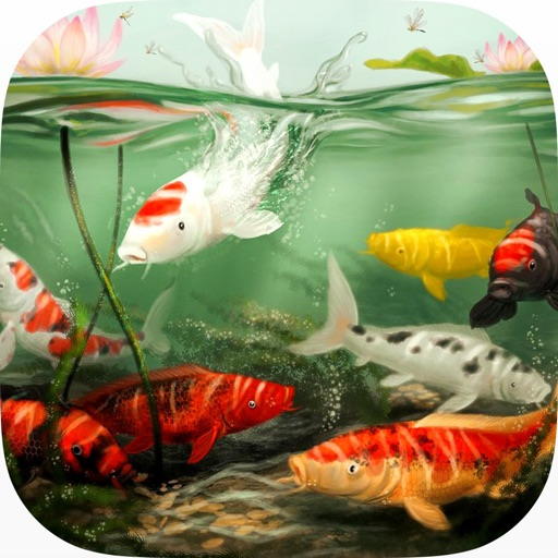 Koi Aqua HD - Real Sim Coral Reef Plants and Live Freshwater Fish Tank Pond & Virtual Tropical Fishes Tour