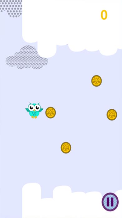 Sky Diving Little Owl