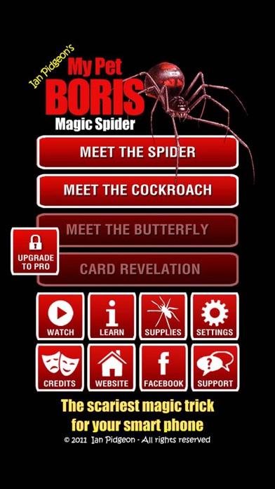 Magic Spider screenshot1