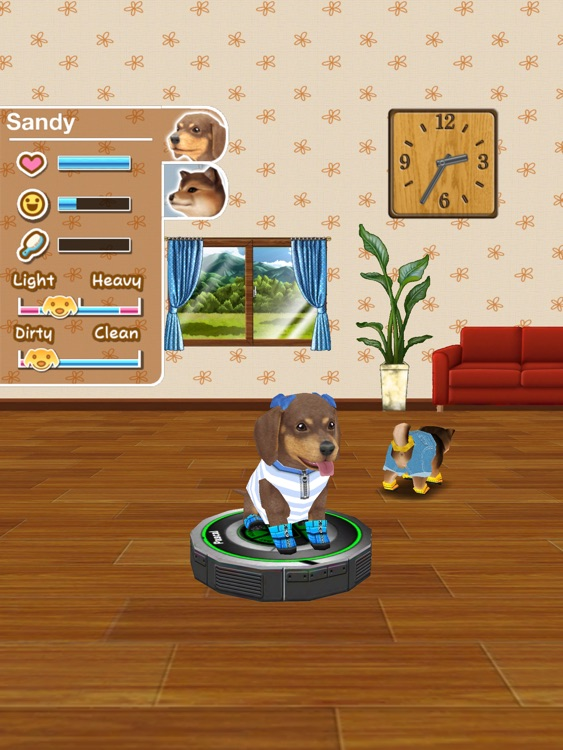 My Dog My Room HD screenshot-4