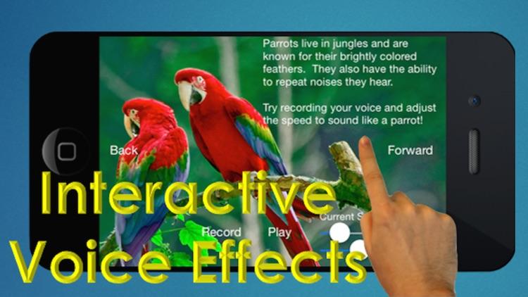 The Bird Book - an Interactive Storybook for Children