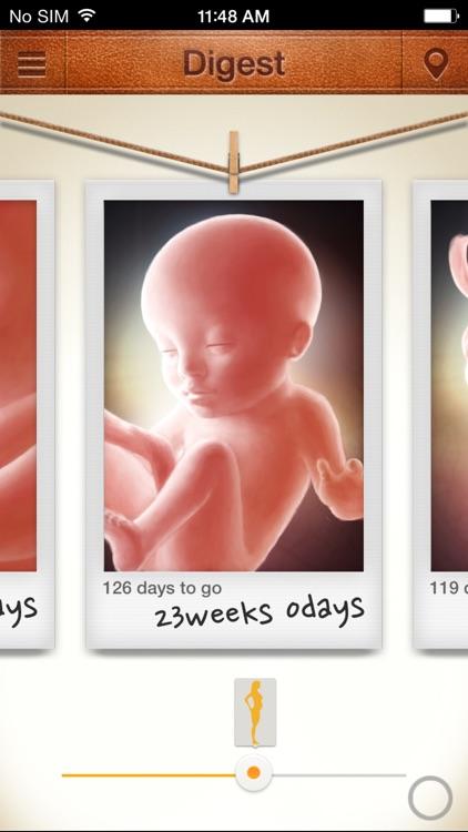 MyAngel 2 - Pregnancy and Infant care