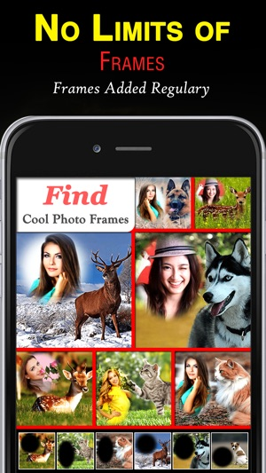 Wildlife Photo Frames Unlimited on the App Store