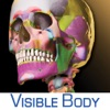 Skeleton Premium - iPhoneアプリ