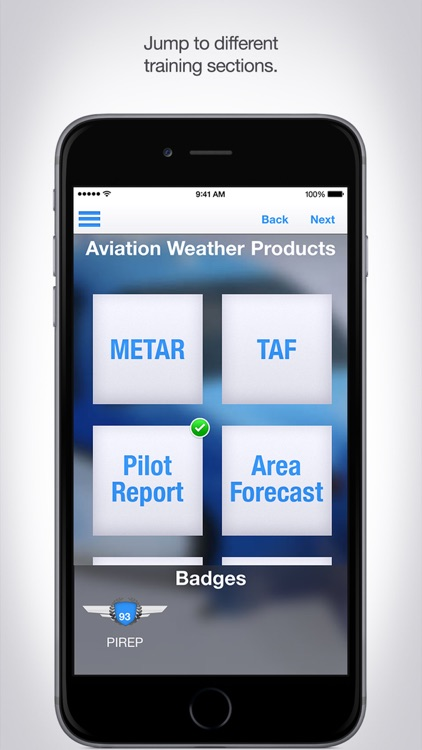 Aviation Weather Reports and Forecasts screenshot-4