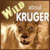 Wild About Kruger Park