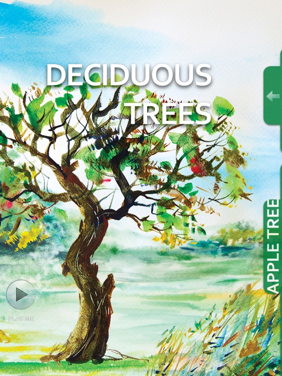 Watercolour - interactive book will help to develop your basic skills in Watercolor. screenshot-4