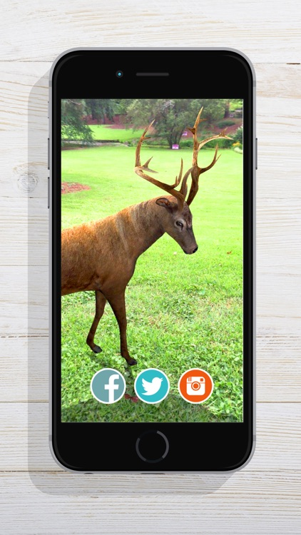 ZooKazam screenshot-2