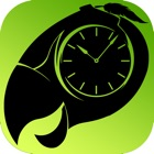 Green Game TimeSwapper icon