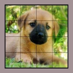 Dog Puzzles Extreme! 2