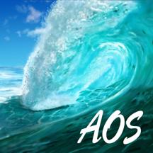 2015 AOS Executive Exchange