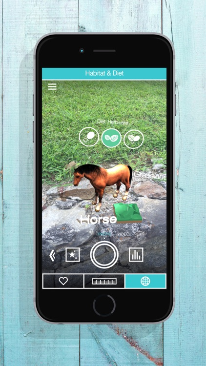 ZooKazam screenshot-1