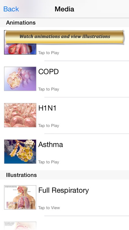 Respiratory Anatomy Atlas: Essential Reference for Students and Healthcare Professionals screenshot-3