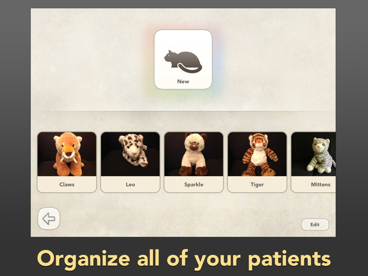 Dr. PetPlay - Pretend Play Veterinarian With Your Own Stuffed Toy Animals screenshot-4