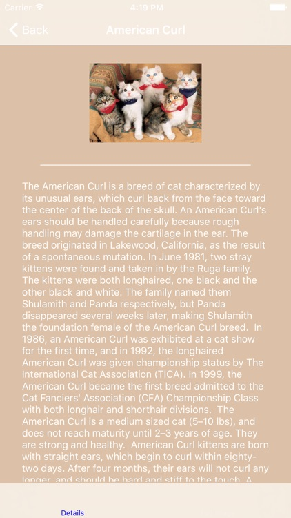 Encyclopaedia of Kittens by Breed - with Cute Pics screenshot-3