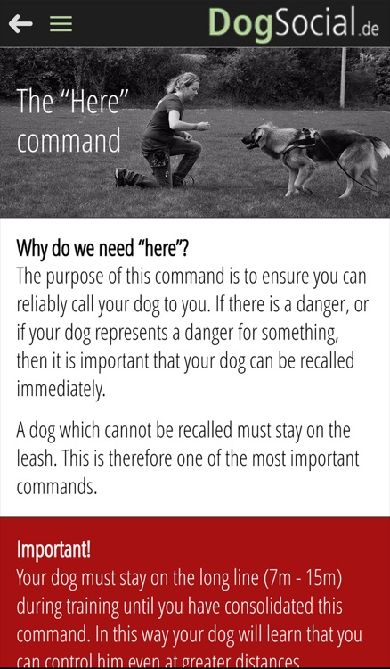 DogSocial Dog Training - Teaching the Basic Commands screenshot-1
