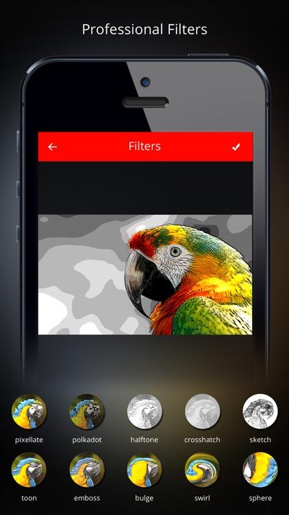Vidblend Video Blender: Merge & blend video clips into one single video & share on Instagram,Facebook & Vine screenshot-4