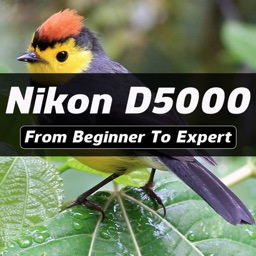 iD5000 - Nikon D5000 Guide And Training