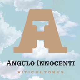 Angulo Innocenti Wines