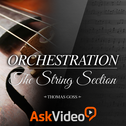 Course For Orchestration - The String Section