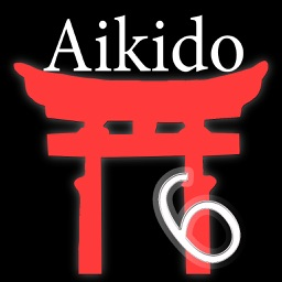 Aikido-Advanced 2