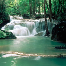 Best Waterfalls Guide