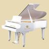 轻松学钢琴 - 钢琴与免费歌曲学习钢琴学习助手